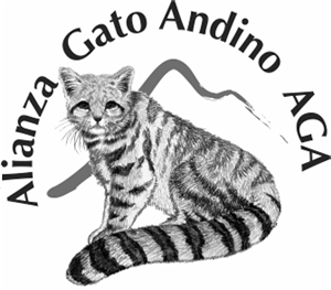 Donating to the Andean Cat Alliance