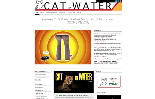 Cat in Water Webpage -- Check it out!
