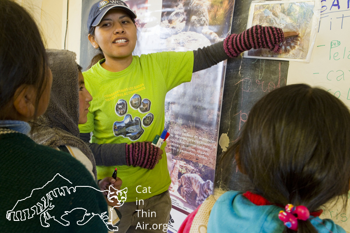 Alejandra points out the distinct stripes of the Andean Cat's tail, western Bolivia.