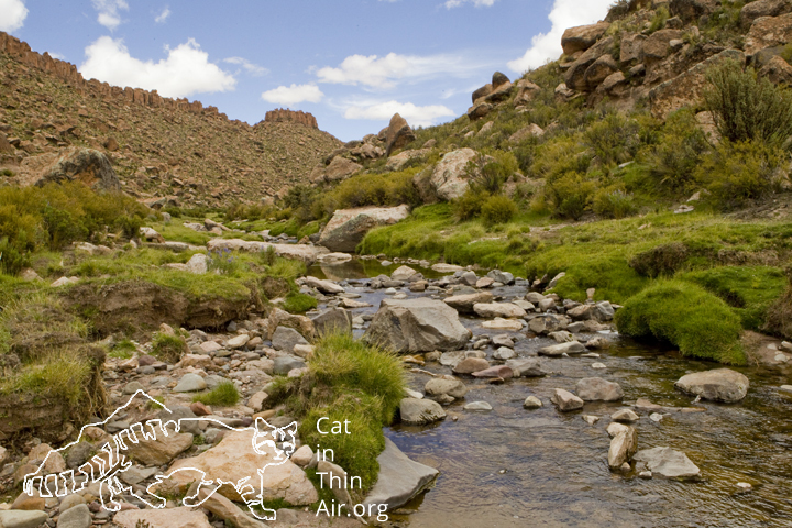 River flowing through valley in altiplano, Ciudad de Piedra, western Bolivia