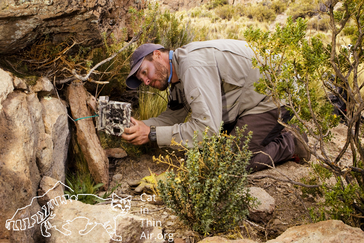 Juan Reppucci checking a camera trap in the altiplano of the high Andes, northwestern Argentina